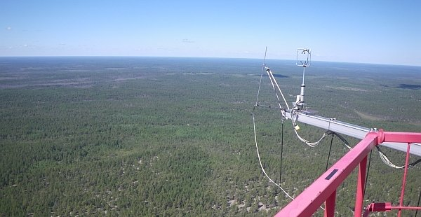 View from the top of the tower onto the Siberian taiga (Photo: Karl Kübler, June 2015)